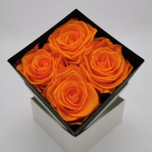 Rosenbox 4er orange