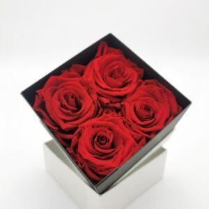 Rosenbox 4er rot
